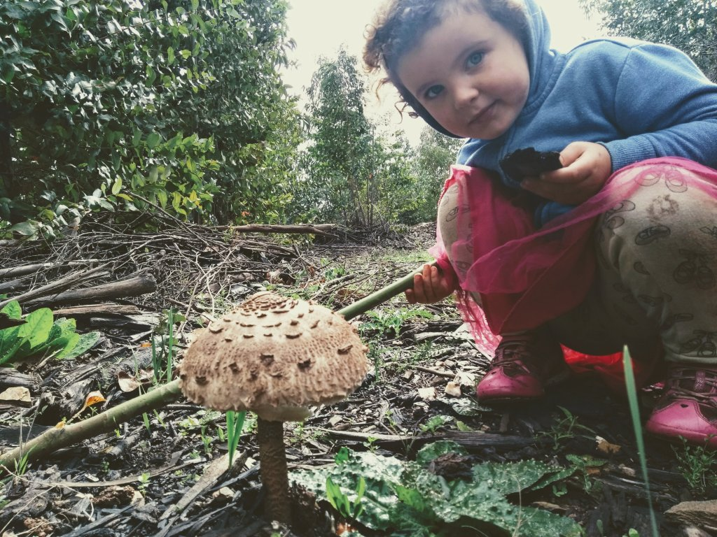 A day in the life unschooling